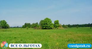 Стоимость земельного участка по кадастровому номеру: как узнать