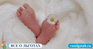 Коробка для новорожденных от Собянина